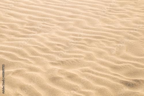 Staande foto Zandwoestijn Sand Dune Desert Texture