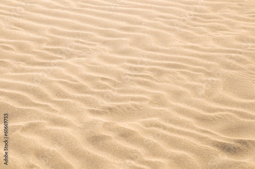 Foto op Canvas Zandwoestijn Sand Dune Desert Texture