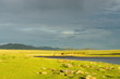 Mongolian landscape just before the storm