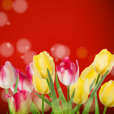 Beautiful bouquet tulips on red. EPS 10