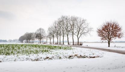 Farmland in the snow