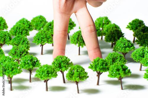 人間の手と森林