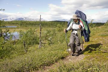 Tundra-Trekking
