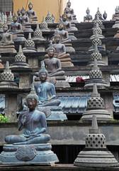 Eternal Buddhas