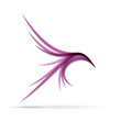 Vector Logo violet birds in flight