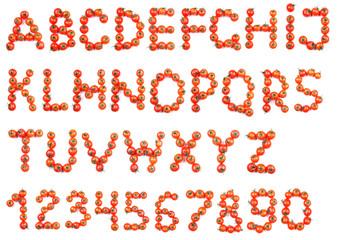 Alphabet of tomatoes