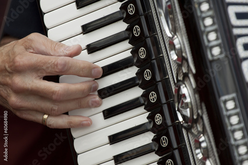 I Play a musical instrument accordion with my fingers.
