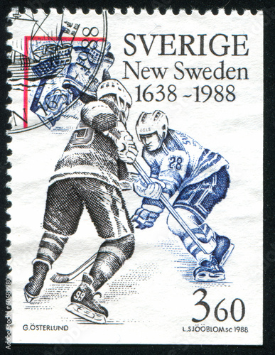 Swedish player in National Hockey League