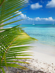 tropical beach in Dominican republic. Caribbean sea. island Saon