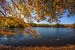 canvas print picture - Fall Season