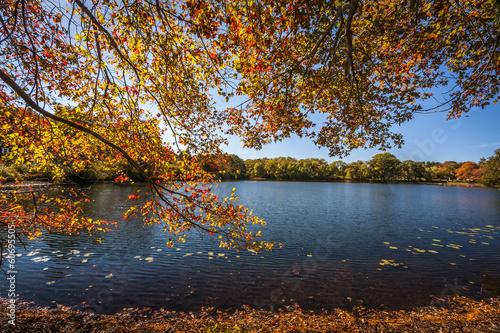canvas print picture Fall Season