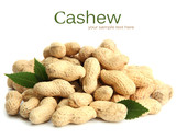 Tasty peanuts with leaves, isolated on white