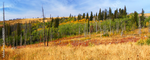 Montana Autumn Scenery