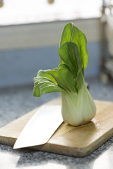 Chinese Vegetable cabbage in kitchen