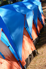 colorful of camping tents on ground
