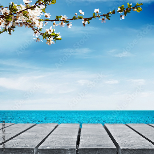 Picnic near water with cherry tree