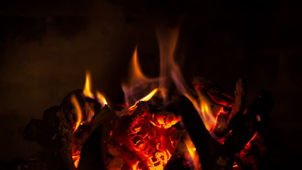 The firewood burning in the fireplace, closeup