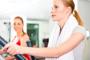 Frauen beim Fitnessstudio Ausdauertraining