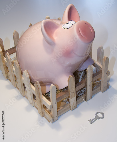 Piggy bank and a key