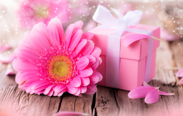 Gerber flower with gift