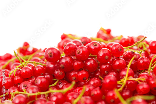 fresh currants