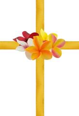 fleurs de frangipanier sur rubans dorés