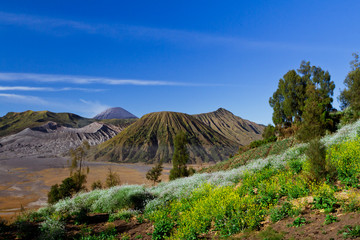 View of a mountain at Jawa Indonesia