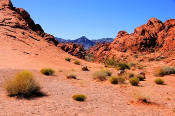 Nevada desert, Valley of Fire State Park, USA