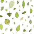 Green leaf. Vector seamless pattern.
