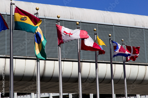 international flags in Miami Airport