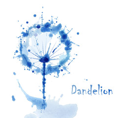 Abstract Watercolor art hand paint background with flower dandel