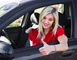 giovane ragazza alla guida