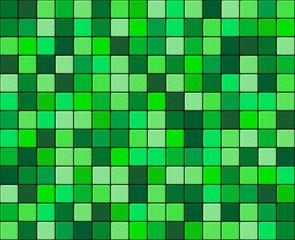 Chlorophyll granular mosaic