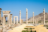Ruins of ancient Persepolis, Iran. Apadana Palace.