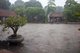Monsoon rain at the temple of Literature in Hanoi, Vietnam.