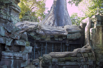 Ruins of ancient Angkor temple Ta Phrom, Cambodia.