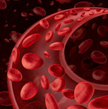 Blood Cells Circulation
