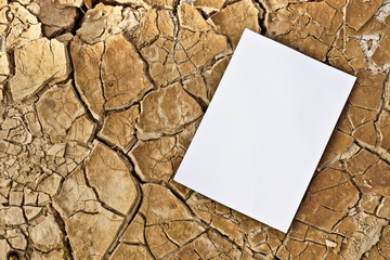 white paper on cracked earth / paper texture