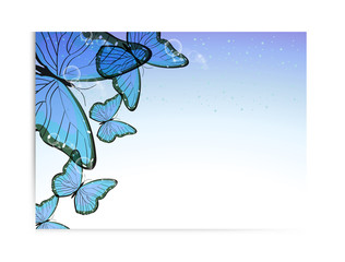 Vector flyer design with butterfly