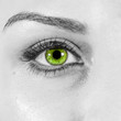 detailed woman green eye close up macro