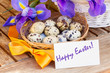 Happy easter   - eggs and blue irises