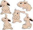 a set of rabbits cartoon