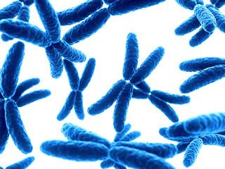 3d rendered illustration of some X-chromosomes