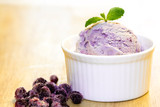 Home made Blue berry ice-cream