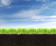 Cross-section of land with soil,grass and blue sky.