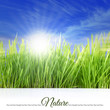 Happy sunny day with grass, blue sky and sunlight