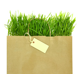 Recycled grocery bag with full of fresh green grass