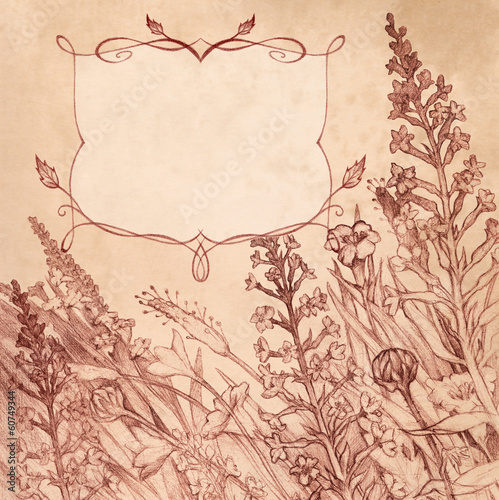 Pencil hand drawing in sepia. Square background with flowers and