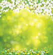 Vector blossoming tree on spring background.