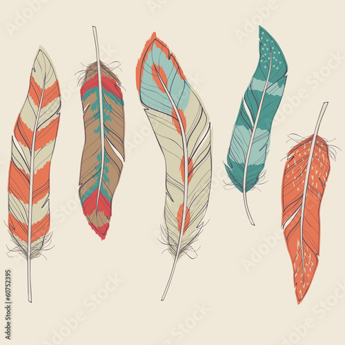 Vector colorful set of different feathers
